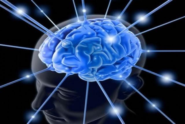 Nutrisi Otak Agar Anak Cerdas