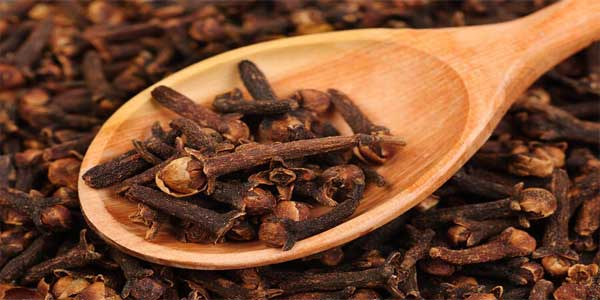 Cloves-for-bad-breath
