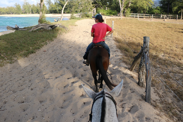 Heading out on a Sunset Horseback Ride on Oahu North Shore