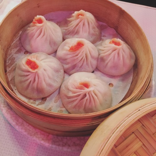 The best soup dumplings in Boston - Dumpling Palace