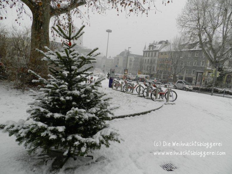 Weihnachtsbaum Echt Oder Künstlich.Die Weihnachtsbloggerei Weihnachtsbaum Echt Oder Künstlich