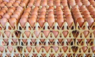 jangan basuh telur yang dibeli