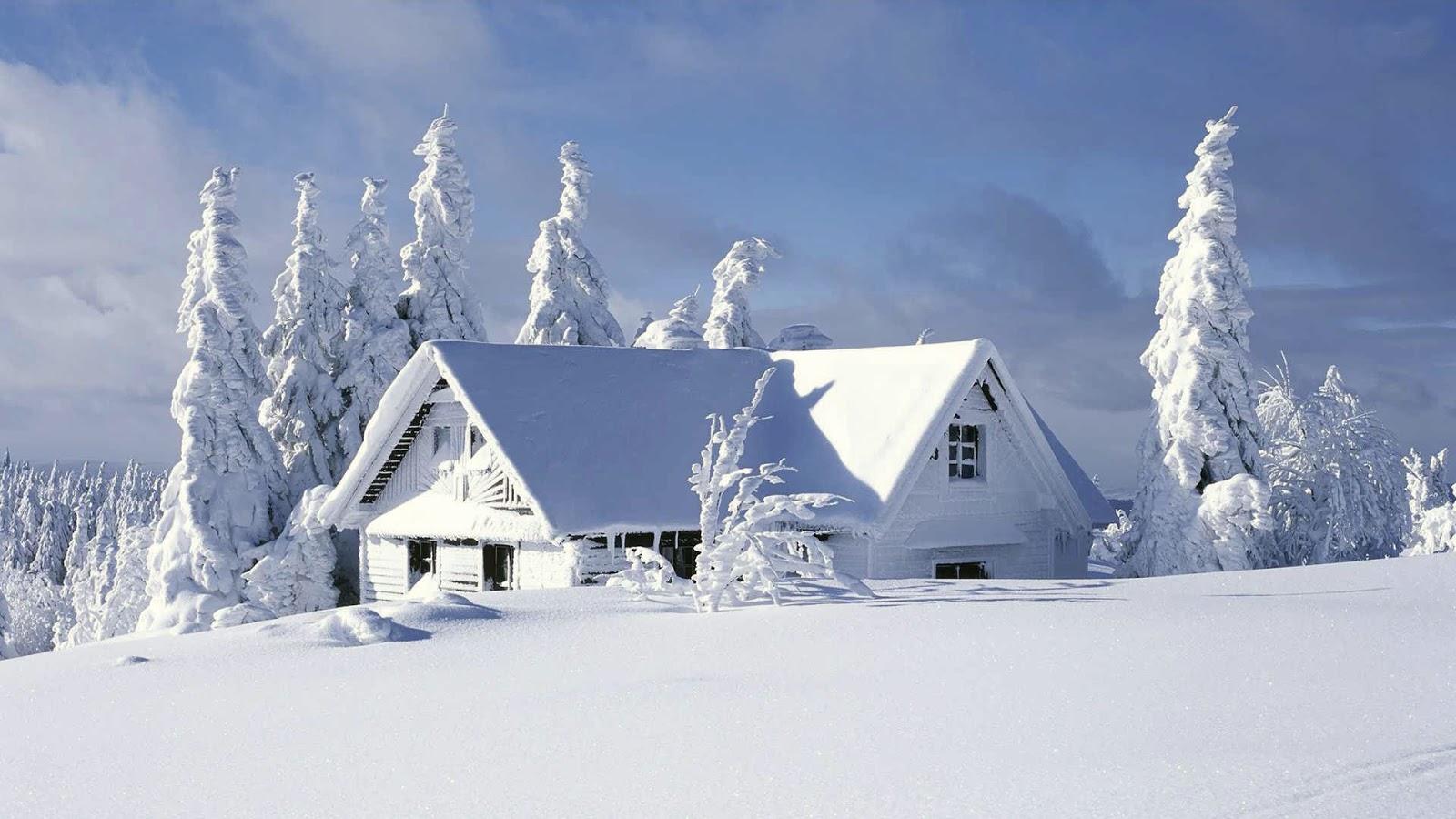 Le poids de la neige christian guay poliquin hop sous Beautiful snowfall pictures
