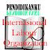 Pengertian Dan Tujuan ILO