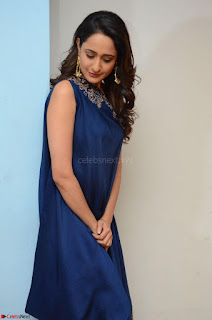 Pragya Jaiswal in beautiful Blue Gown Spicy Latest Pics February 2017 026.JPG