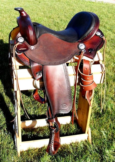 journey to better hooves: saddle fit journey