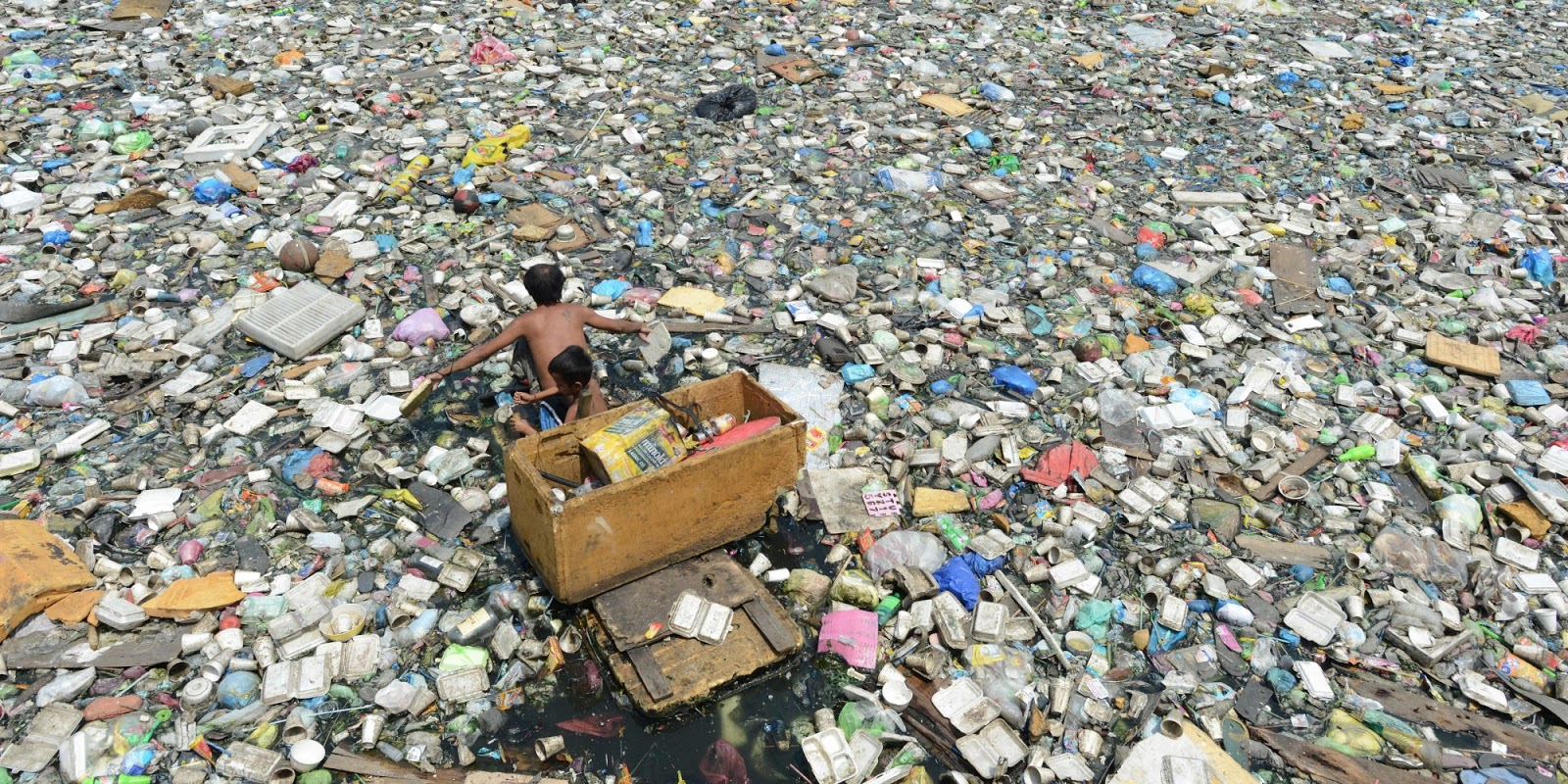 Effects of plastic and the great