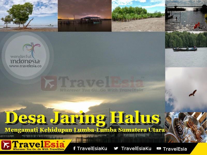 Desa Jaring Halus