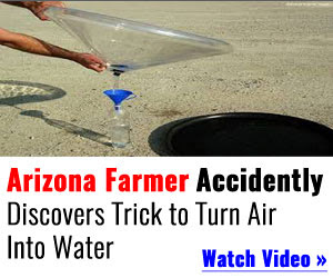 World War Water