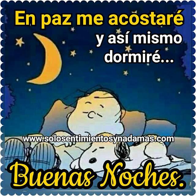 Buenas noches.