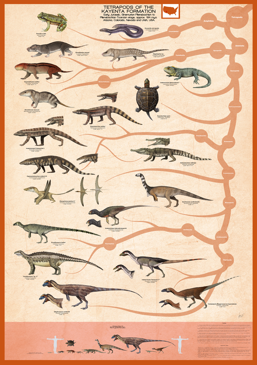 Gabriel Ugueto's Kayenta Formation Poster