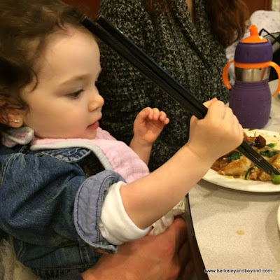 child digs in with chopsticks at Buddha Bodai One Kosher Vegetarian Restaurant in NYC