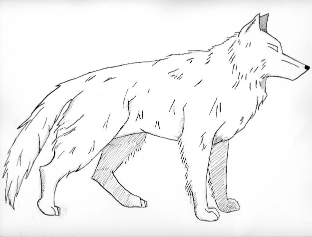 Free Coloring Pages Of Baby Wolf