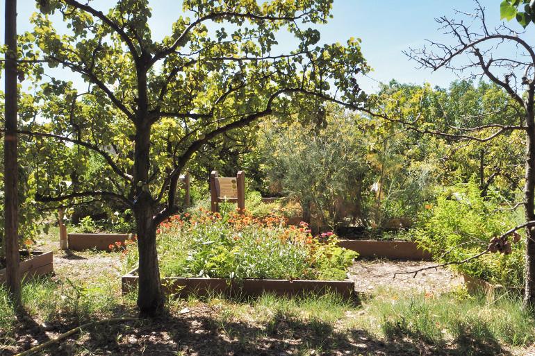 Jardin aromatique du domaine de l'Oiselet
