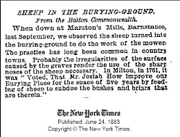 """SHEEP IN THE BURYING-GROUND"""