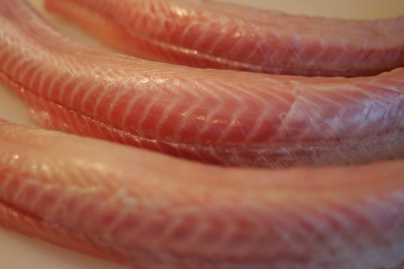 Tiburones en Galicia: La musculatura del tiburón