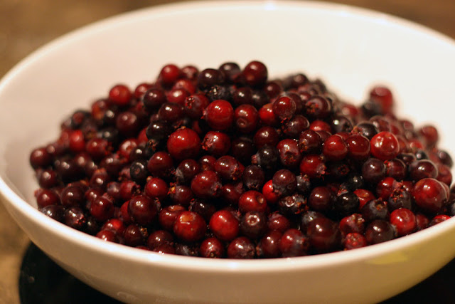 A bowl of glistening saskatoon berries.