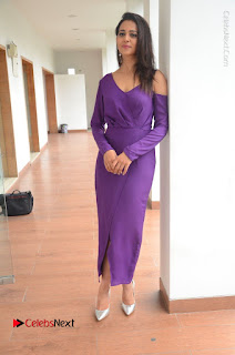 Actress Rakul Preet Singh Latest Stills in Beautiful Long Dress  0137.JPG