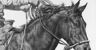 caballos-poder-equino-en-dibujos