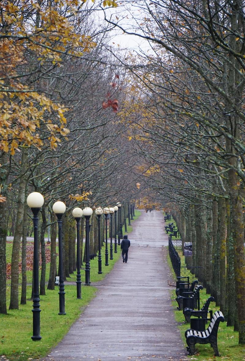 Tallinna Kadriorgin puisto