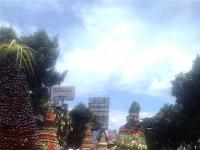 Asyiknya Rafting di The Picas Kali Serayu Banjarnegara