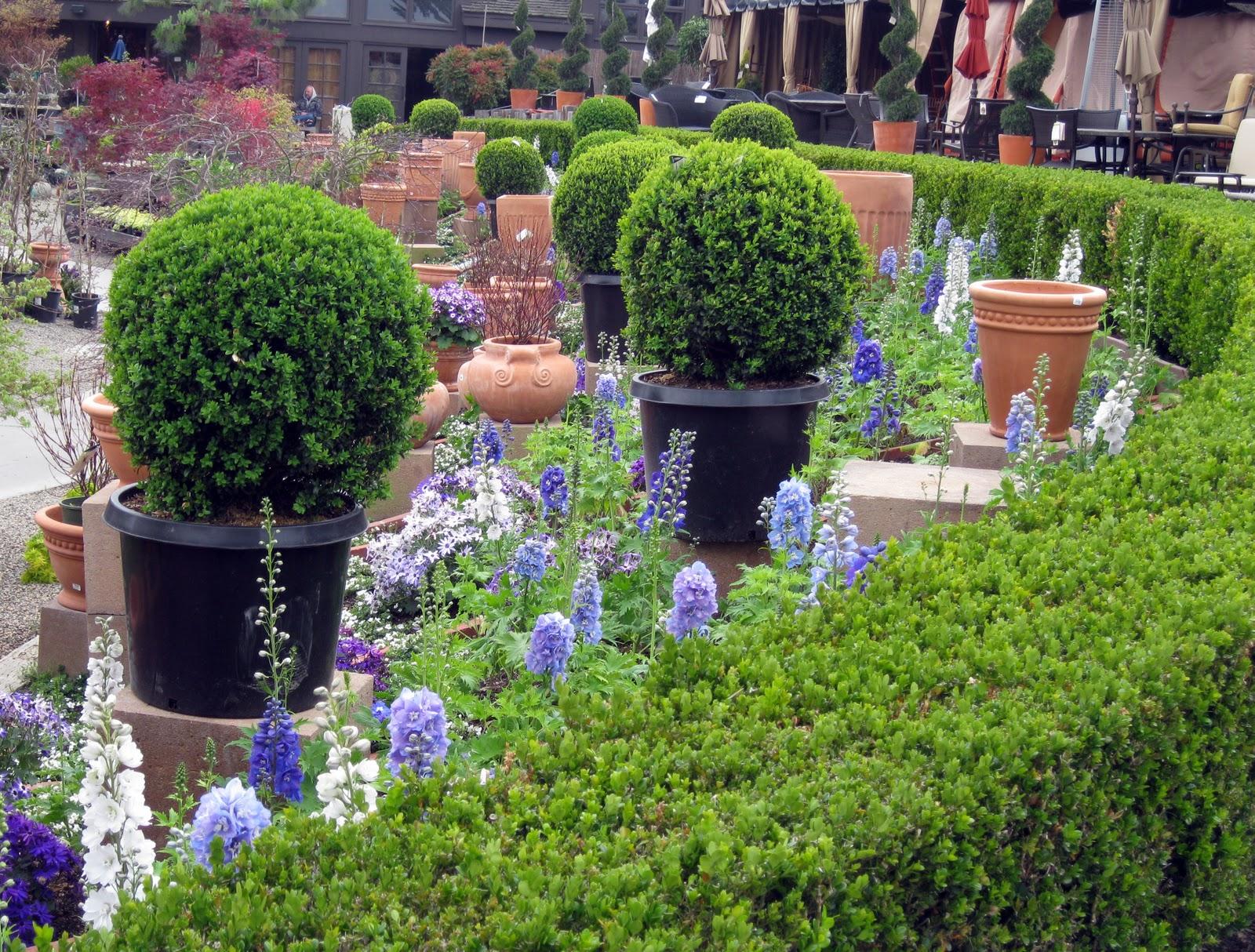 GARDENING: Spring At Rogers Gardens, Newport Beach