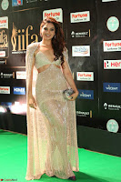 Tanya Hope Charming Beautiful Yioung Fresh Face in Designer Gown at IIFA Utsavam Awards 2017  Day 2  Exclusive 13.JPG