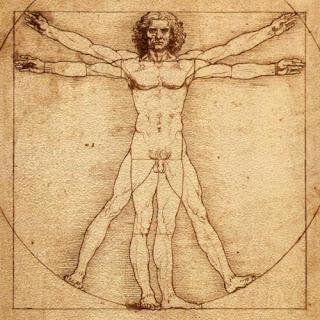 El hombre de Vitruvio- Leonardo da Vinci