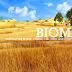 √ Pengertian Bioma, Fungsi, Ciri, Jenis dan Contohnya