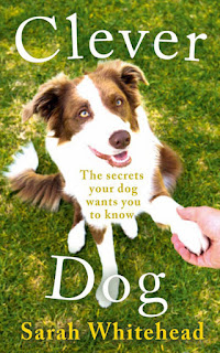 Book-club-Clever-dog-Sarah-Whitehead