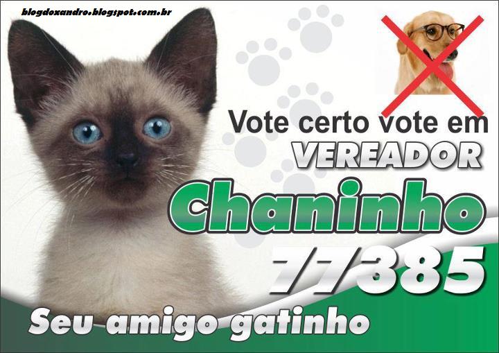 chaninho.jpg (720×509)