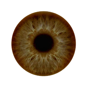 Eye Lenses HD PNG Images Free Download - Top 10 Wallpapers