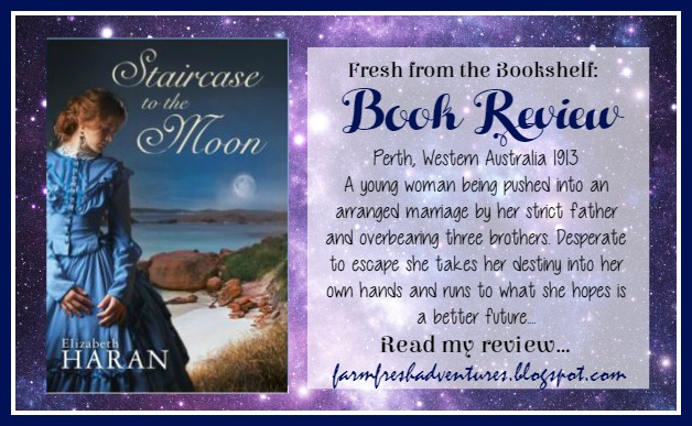 Staircase to the Moon by Elizabeth Haran: eBook Review