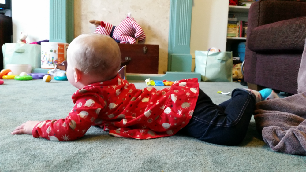 Toddler Togs: Robin Tunic