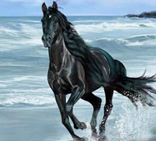 Arti Mimpi Naik Kuda Hitam