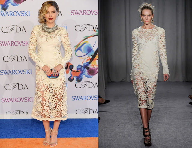 Sophia Bush in Marchesa – 2014 CFDA Fashion Awards