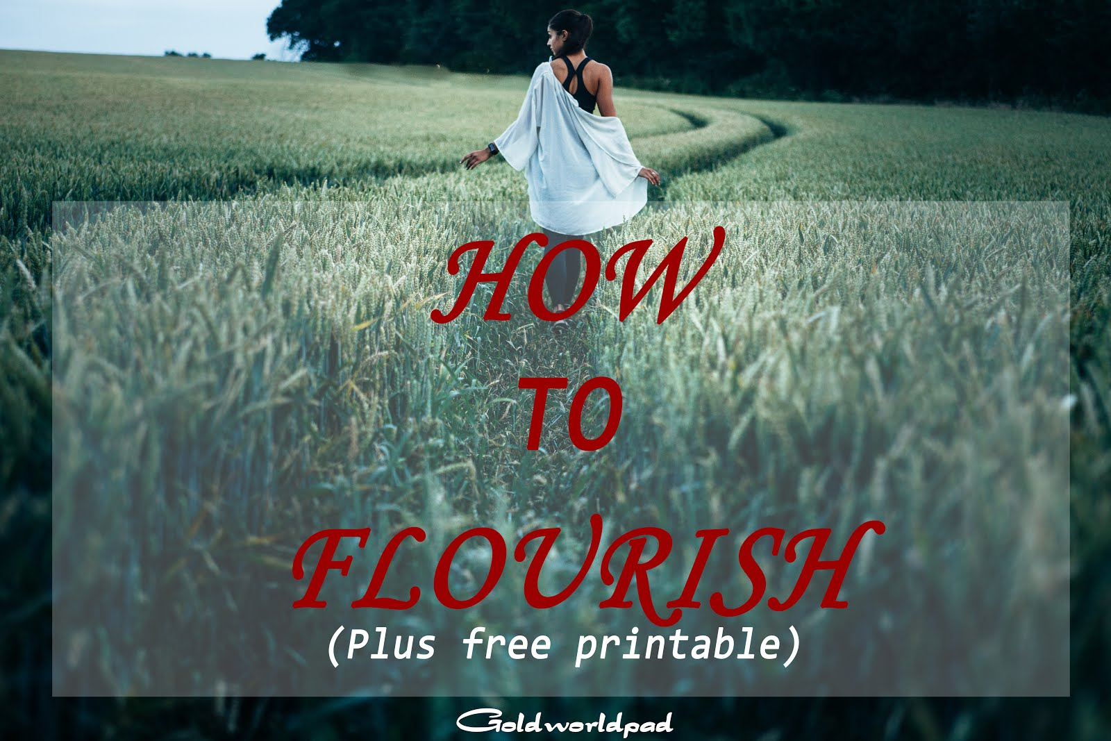 How to flourish or thrive as a Christian