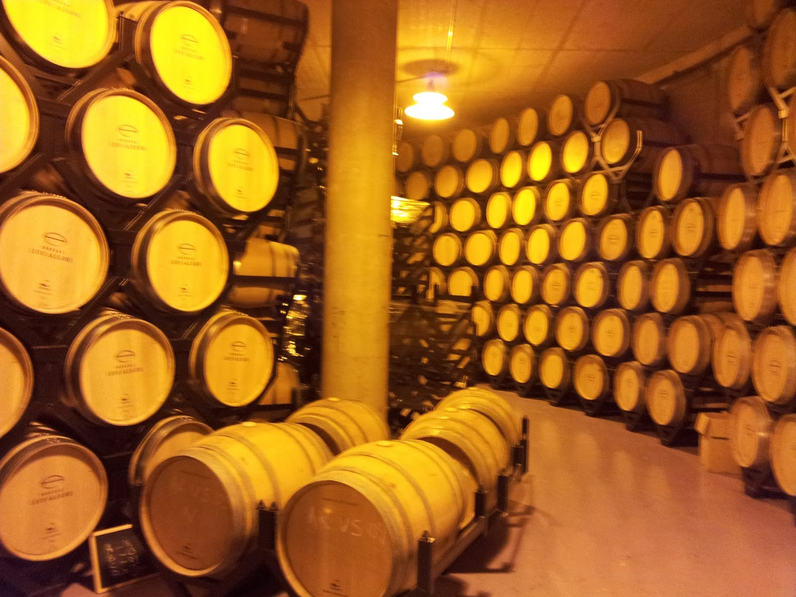 Best wineries in a private Rioja wine tour designed for your tourguide
