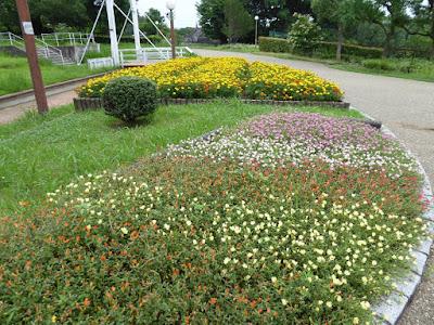 花博記念公園鶴見緑地 西ゲート付近の花壇