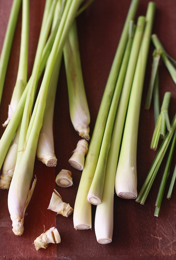 what is lemon grass?