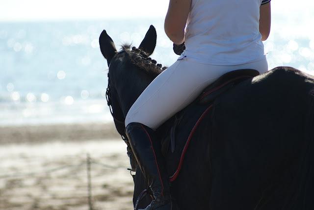 Cheval et son cavalier face à la mer, vue de dos