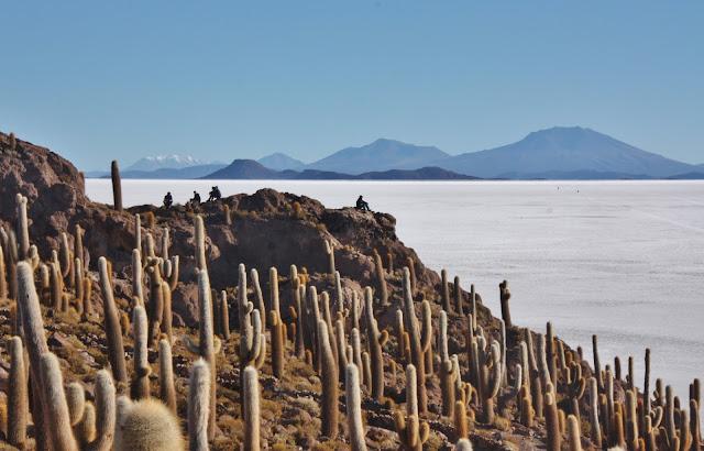 Isla Incahuasi no Salar de Uyuni, na Bolívia