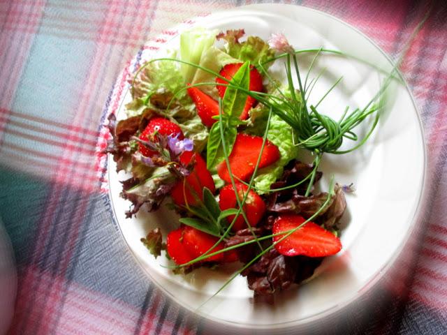 Epres tavaszi saláta illatos kerti fűszerekkel és  virágokkal