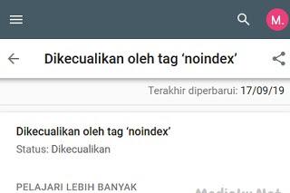 Dikecualikan Oleh Tag Noindex