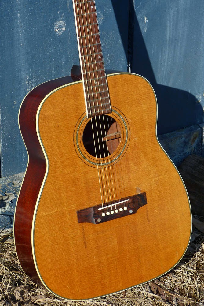 Models regal guitar National/Dobro History