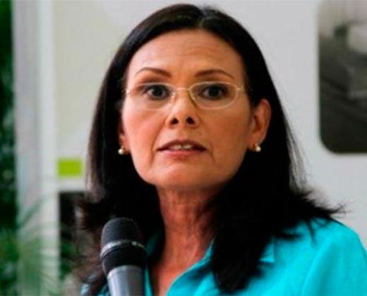 Socorro Hernández indicó que el CNE está concentrado en la renovación de partidos y no en elecciones