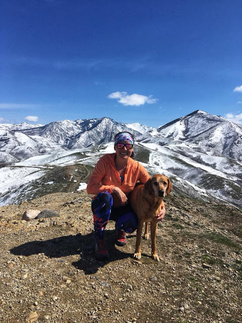 The Avenue's Twin Peaks, Salt Lake City, Utah, Hiking in Utah with Dogs