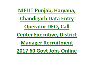 NIELIT Punjab, Haryana, Chandigarh Data Entry Operator DEO, Call Center Executive, District Manager Recruitment 2017 60 Govt Jobs Online