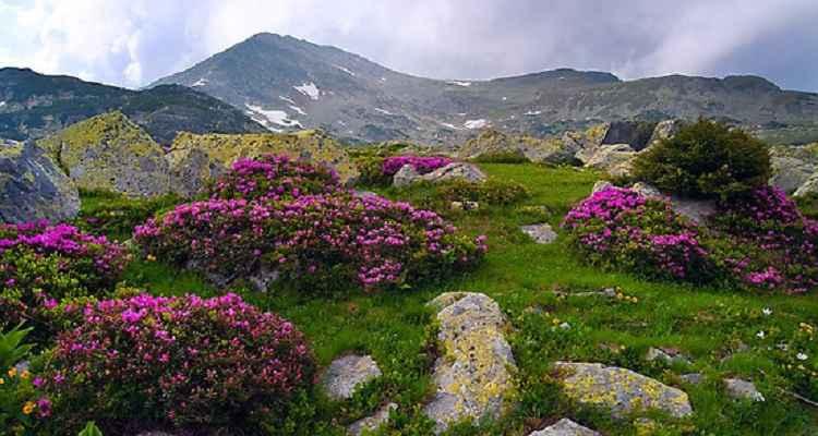 Imagini impresionante pe muntii Retezat