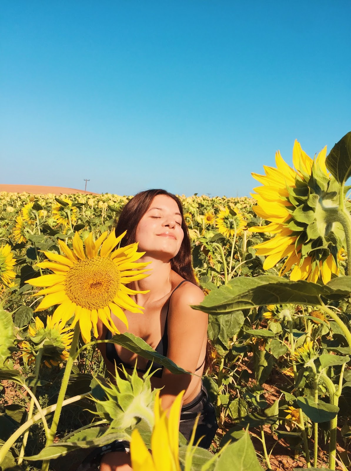 the girl named love, love improchori, sunflowers, field, hair scarf, summer, greece, flowers